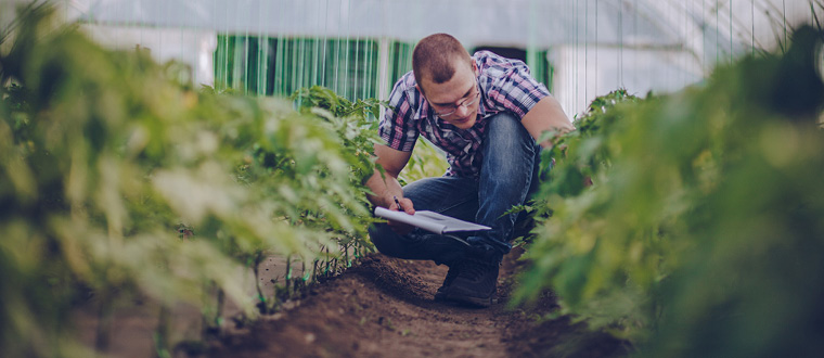 How to become an Agricultural Technician - Salary, Qualifications, skills &  Reviews – SEEK